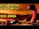 Олгой-Хорхой - Гигантский червь смерти (вся инфа)