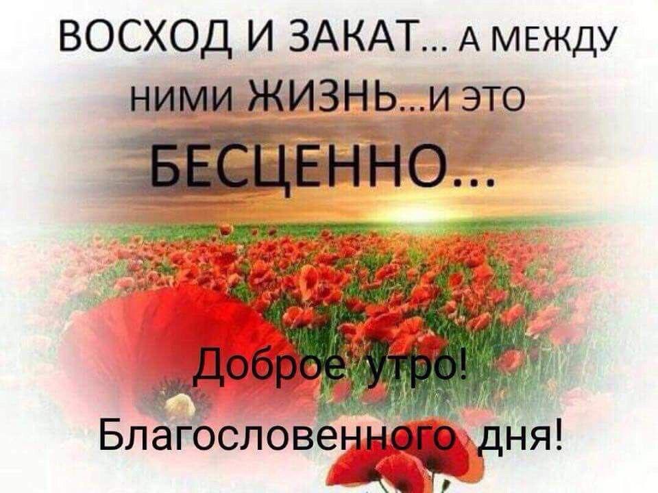 Гузель Хамидуллина, Заинск - фото №1