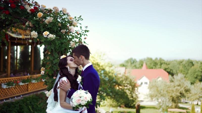 Klip Wedding F. Demko)