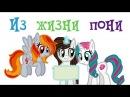 Анимация «Из жизни пони»/Pony IRL: Art РУССКИЙ ДУБЛЯЖ