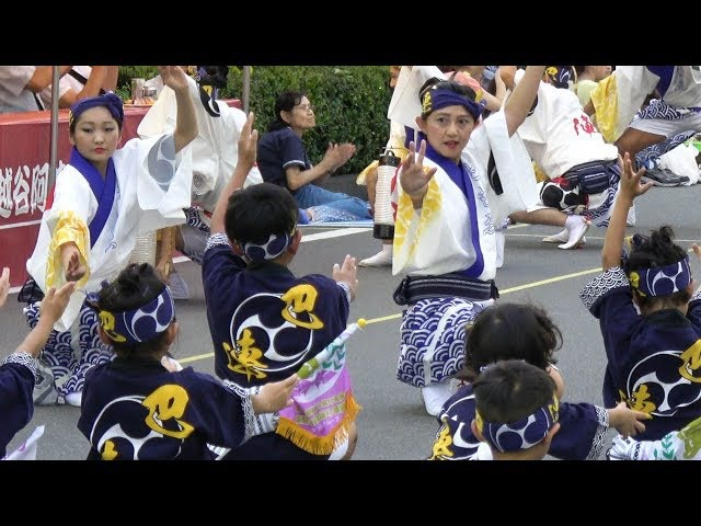 流し踊り「巴連」第33回南越谷阿波踊り 2017 8 20