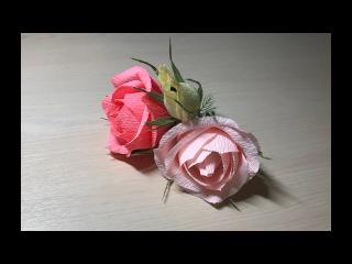 Цветы из конфет/Пышная роза из конфет