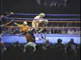 Super Sunday (Bockwinkel vs Hogan in Title Match)