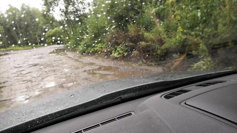 после урагана в Архангельке (дорога на дачу)