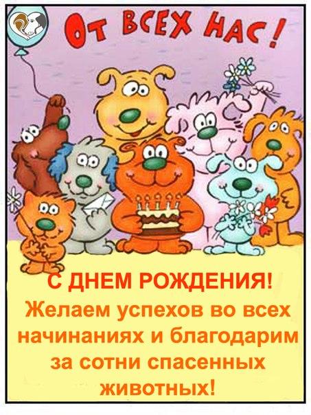 Прикольные поздравления с днем рождения ветеринару возрасте