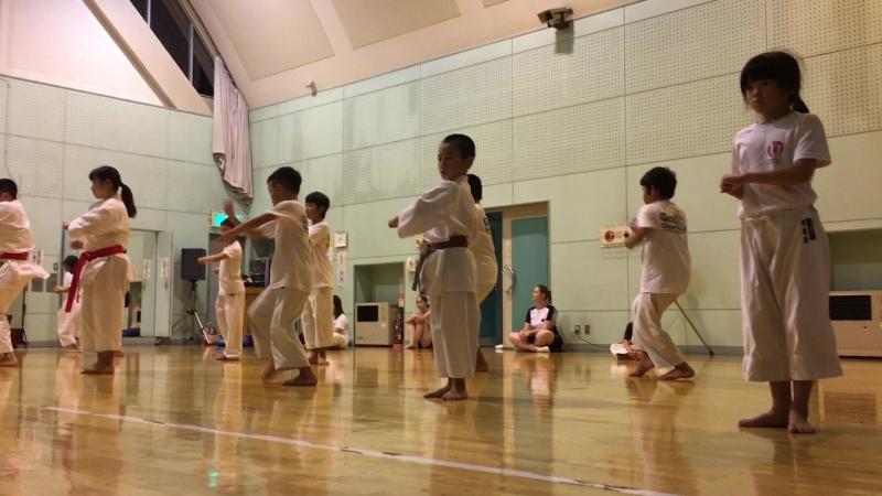 Хейан (Пинан) Годан. Yukimitsu Hasegawa karate school. Kofu-Japan 2018