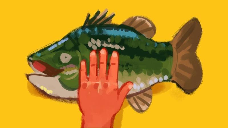 Slappin' a bass