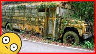 Abandoned school bus. Old abandoned rusty buses
