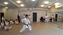Chatan yara nu sai / Masashi Takemoto 4 dan Ryukyu Kobudo Hozonkai seminar in Moscow