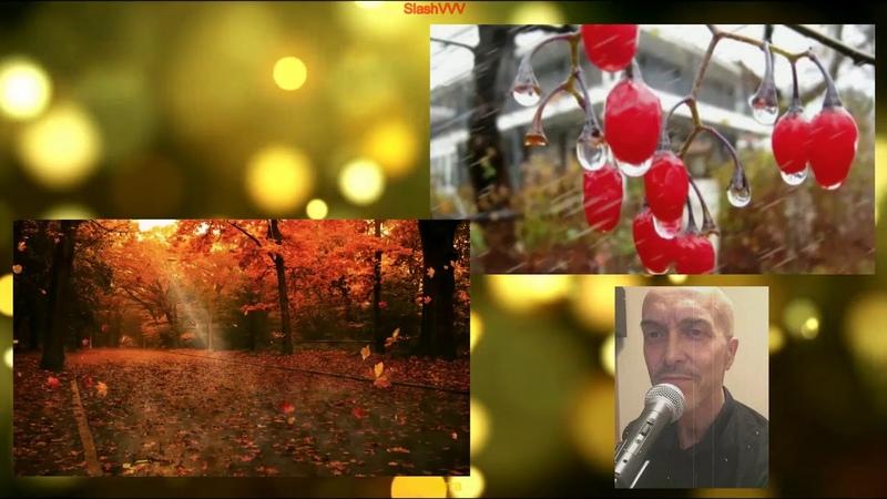 SlashVVV Вот и осень