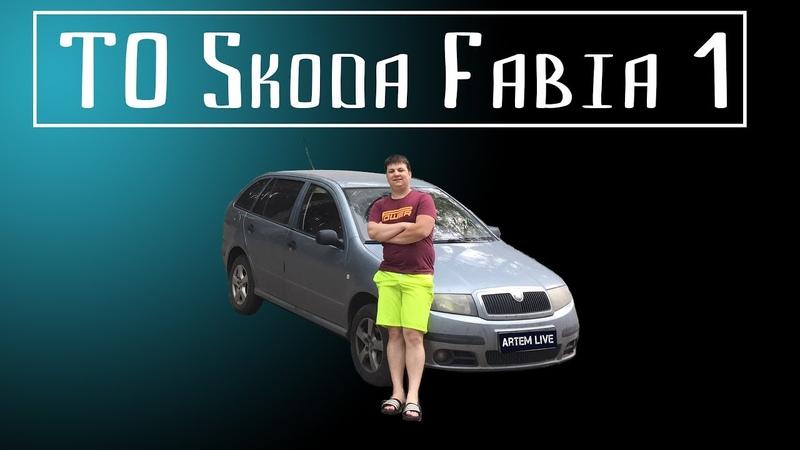 Skoda Fabia. Шкода Фабия. Замена топливного, воздушного фильтра. Замена салонного фильтра