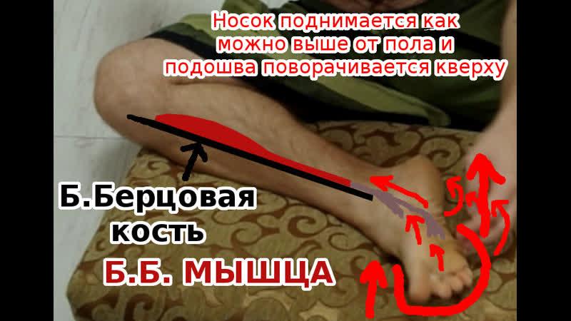 ЗББ - задняя большеберцовая мышца. Плоскостопие. Ходьба носками наружу. Массаж, пробивка и тренировка.