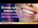 Почему зубы влияют на позвоночник и органы человека. Михаил Сватковский. Часть 1