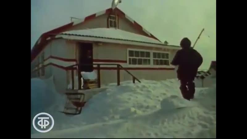 1991 Обыкновенная Арктика