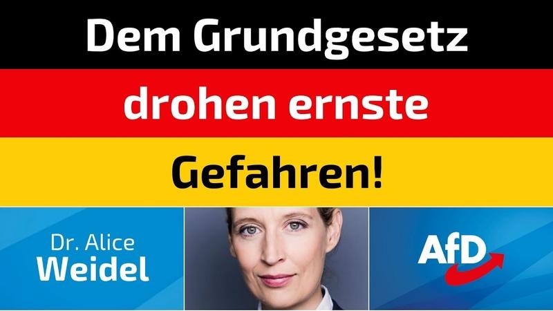 Alice Weidel (AfD) - Dem Grundgesetz drohen ernste Gefahren!