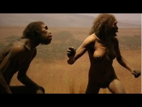 Первобытные люди. Эволюция человека разумного. Документальный фильм. 2серия.
