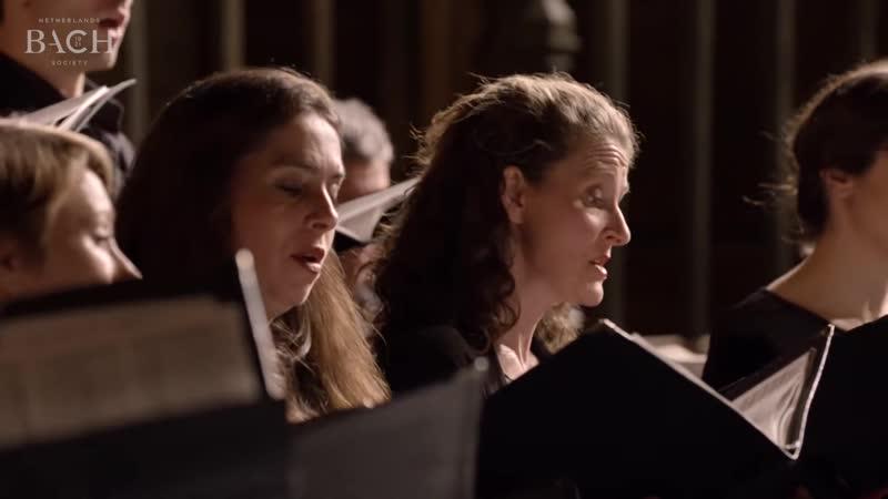 227 J S Bach Jesu meine Freude BWV 227 Netherlands Bach Society Christoph Prégardien