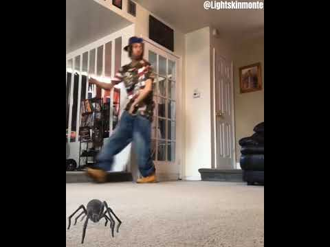 Oh sh t a spider
