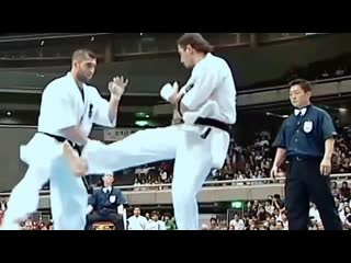 Karate kyokushin knockouts