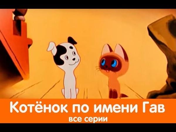 КОТЁНОК ПО ИМЕНИ ГАВ Мультфильм советский для детей смотреть онлайн