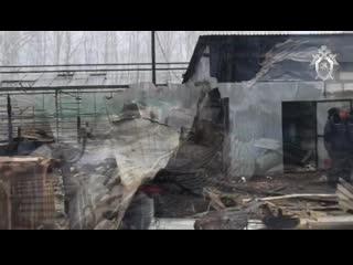 Видео с места пожара на территории тепличного комплекса в Подмосковье