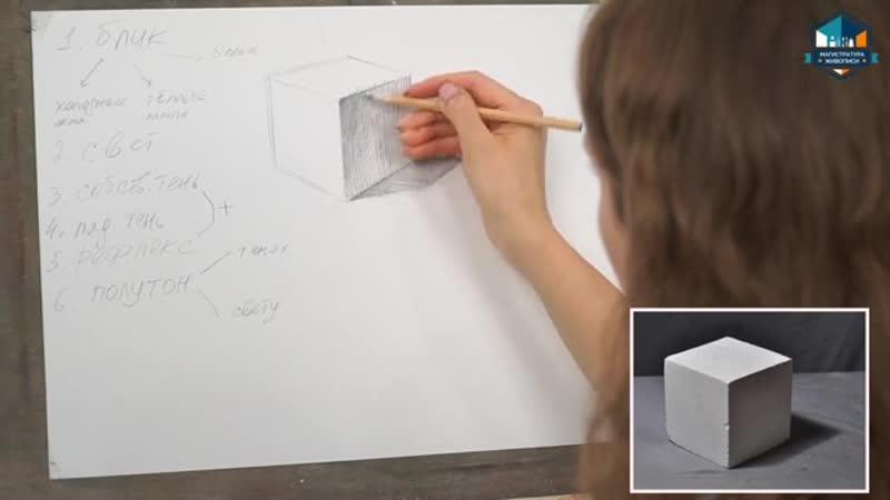 Урок 1.8. Логика света и тени. Учимся передавать объём предметов. Теория