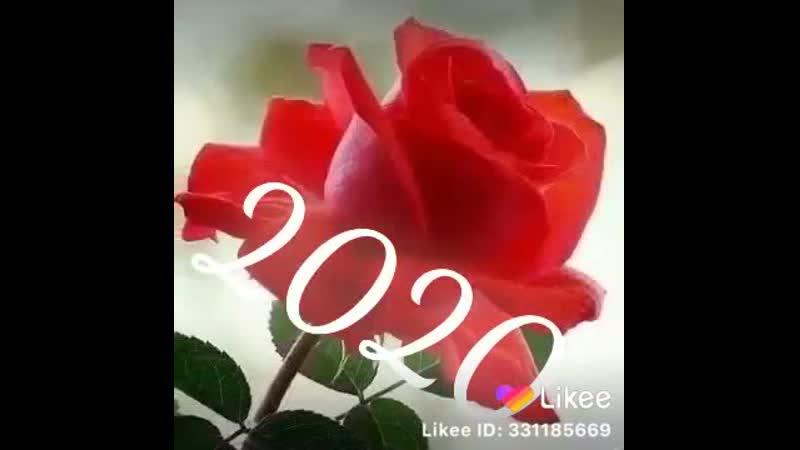 Like 6774158965
