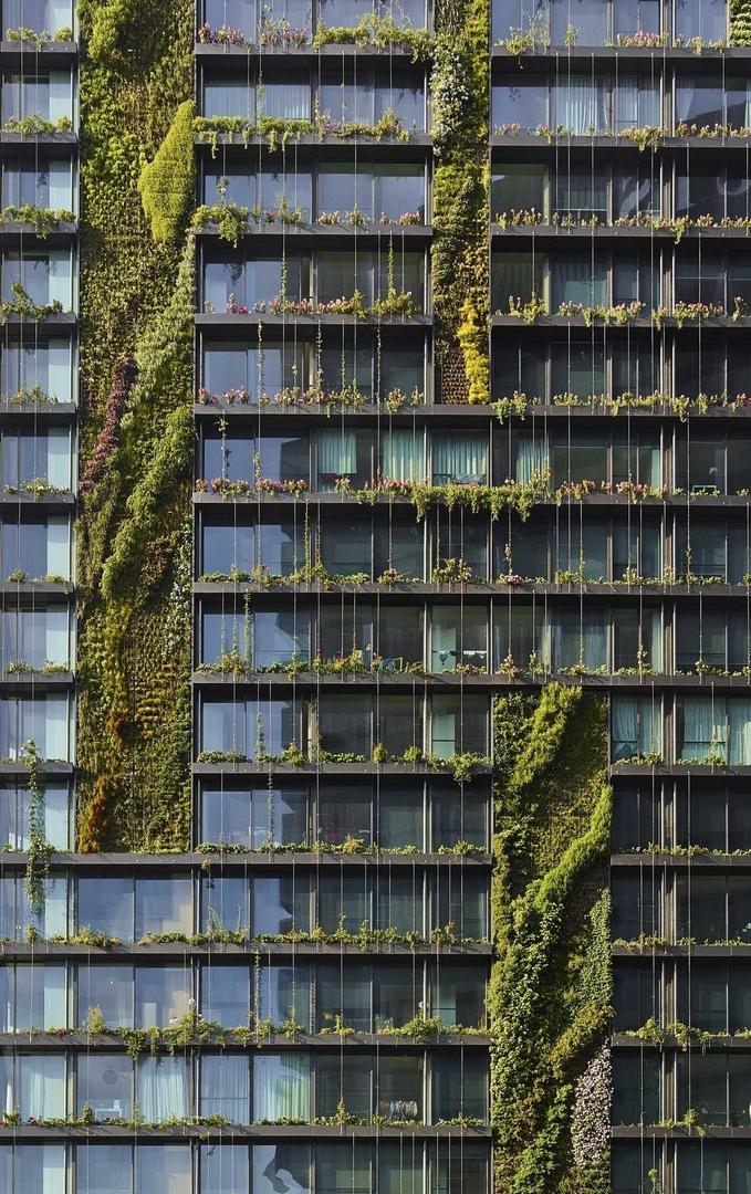 Зеленая архитектура