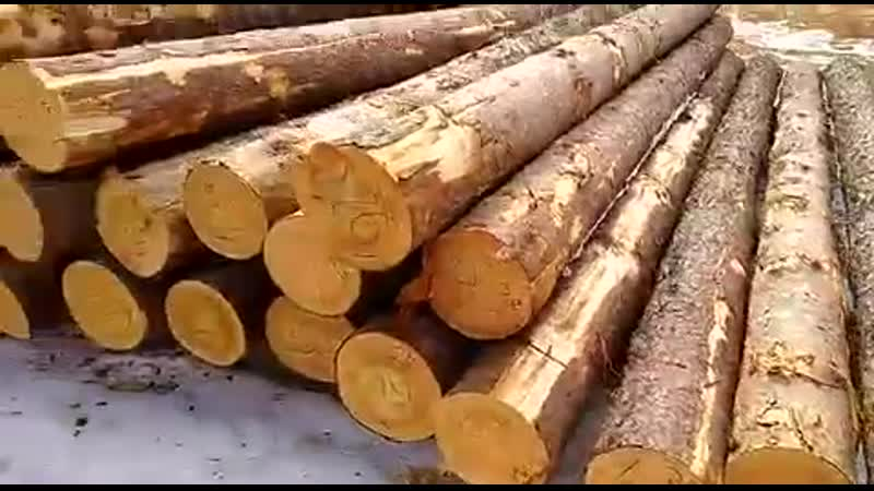 СК Срубы Севера ручная рубка сруб дома для заказчика из Москвы
