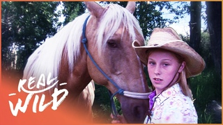 Hero Horse Leads Young Girl To Safety From Being Lost In The Forest | Pet Heroes | Real Wild