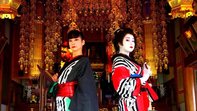 HATENKOHRO Music Video Oedo Nihombashi   お江戸日本橋