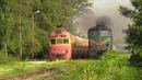 Две классики дизель поезд Д1 и тепловоз 2ТЭ10Л Two classics D1 DMU and 2TE10L