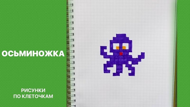 Как нарисовать осьминожку Рисунки по клеточкам для срисовки