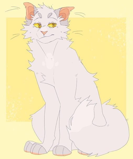 Картинки коты-воители буран