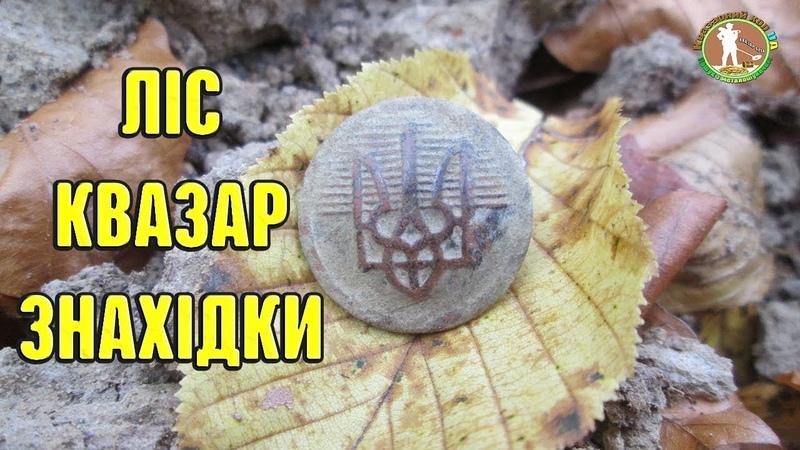 ДУШЕВНИЙ КОП В ЛІСІ З МЕТАЛОШУКАЧЕМ КВАЗАР АРМ. Коп монет на цікавих місцях