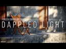 Corona tutorial - Dappled light with Corona Scatter and Opacity map (English subtitle)