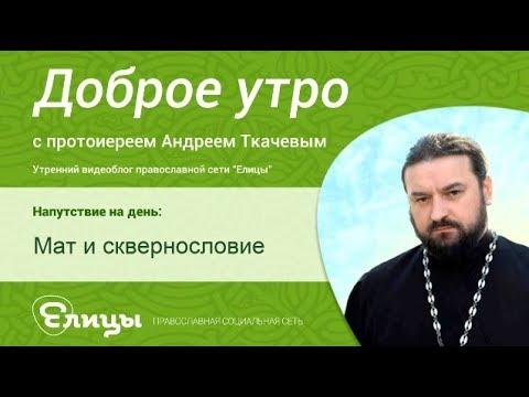 Мат и сквернословие. о.Андрей Ткачев. Проклятия и бесовский лай, матерная брань.