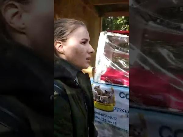 Выставка пушистиков в Бауманке 14 09 2019