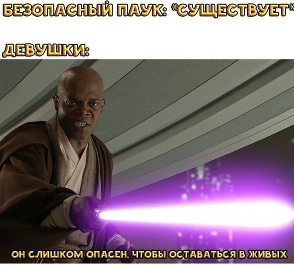 star wars memes - HD1600×1200