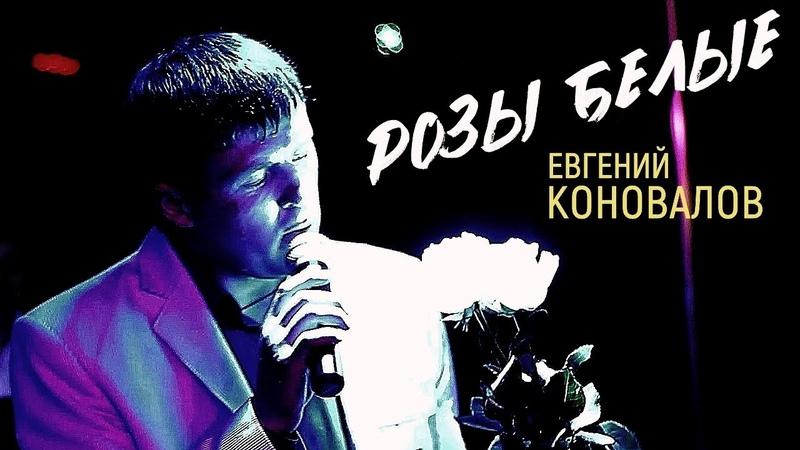 РОЗЫ БЕЛЫЕ ХИТ 100% Евгений КОНОВАЛОВ