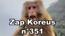 Zap Koreus n°351