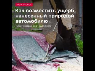 ФОРС-МАЖОР: Как возместить ущерб, нанесенный природой автомобилю