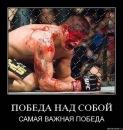 Личный фотоальбом Константина Пилипчука