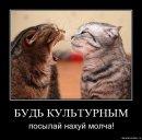 Фотоальбом Сергея Залозного
