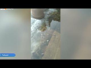 Пять домов подтопило в Тайшете из за весеннего паводка