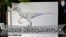 Как нарисовать динозавра Велоцираптор шаг за шагом карандашом. Мир Юрского Периода.