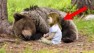 Дикий медведь СПАС маленькую девочку от НАСИЛЬНИКА, так он отблагодарил людей за свое СПАСЕНИЕ!