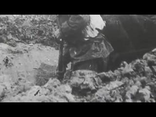 Ветеран жестоко отомстил карателю. Рассказ ветерана о Великой Отечественной войны