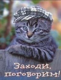 Alexander, 24, St. Petersburg