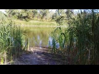 Ерек Верблюд.Безумная протяжённость.Отличное место для отдыха,шашлыка,рыбалки.Интервью рыбака.Рыбаки по всюду.Красивый пейзаж...